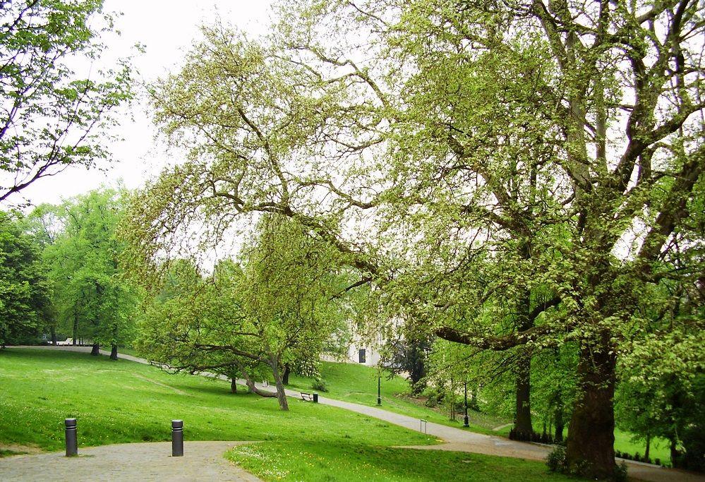 Parque Leopoldo, Bruselas