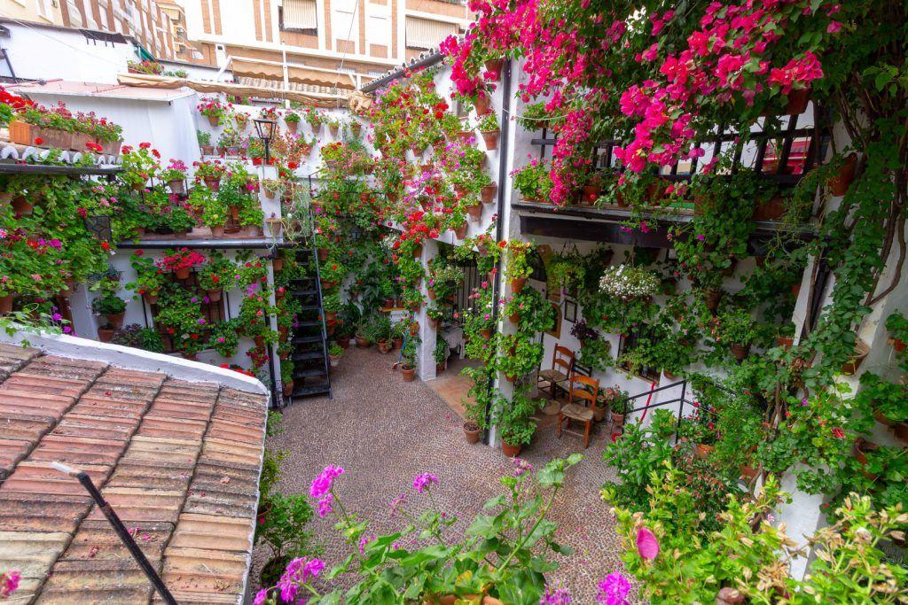 ¿Dónde están los patios de San Basilio en Córdoba?